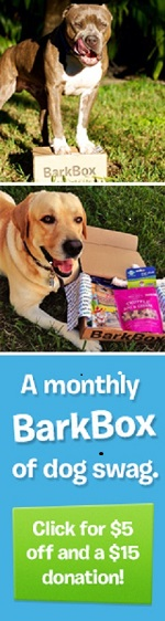 BarkBox will Donate $15 to Pet Rescue Team with a purchase of a doggie gift box.