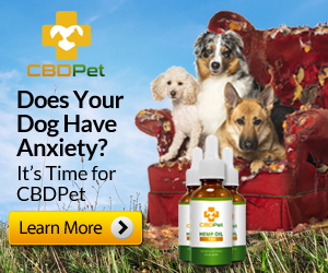 CBD Pet